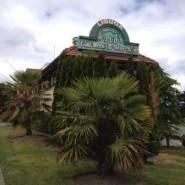 Monkey Tree Pub