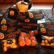 Jack-o-lantern seeds, a frighteningly good DIY Halloween gift idea