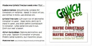 Grinch Tree care tag
